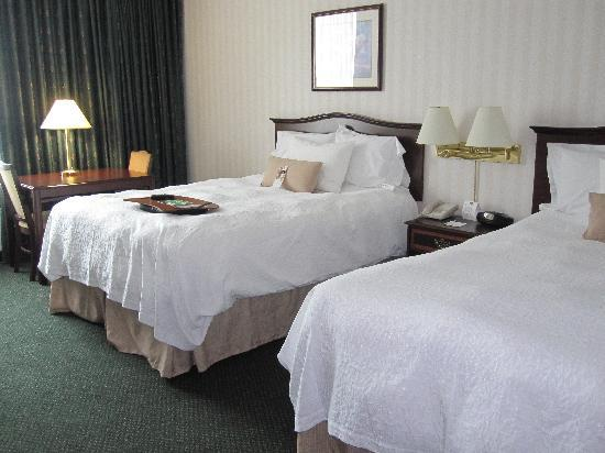 Hampton Inn by Hilton Ottawa : Room