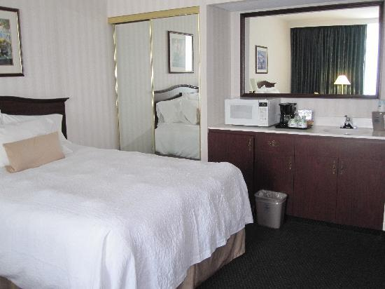 Hampton Inn by Hilton Ottawa : Microwave and fridge