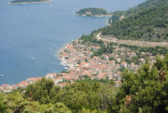 WearActive: Vis town as seen from a hike