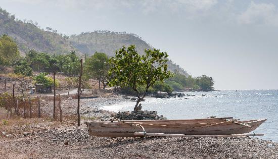 Östtimor: Timor coast line