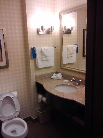 Hilton Garden Inn Houston West Katy Mills : Baño
