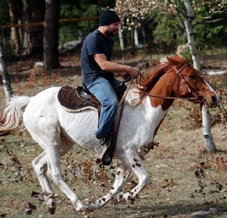Beaver Guest Ranch : Horseback