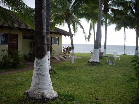 Hotel Iguanazul: Grounds with hammocks