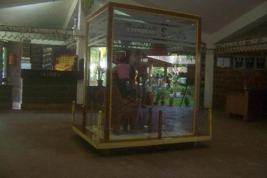 Toshali Sands: Toshali statues at reception