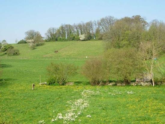Villers En Arthies, Francja: Les champs