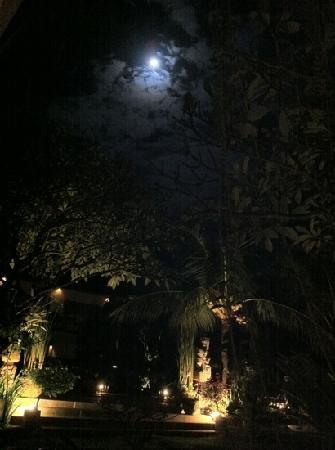 Mentari Sanur Hotel: cozy balcony with full moon view from room 107