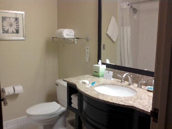 BEST WESTERN Plus Plaza by the Green: The excellent bathroom