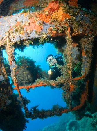 "Blue Fin Divers Naxos Greece: Shipwreck ""MARIANNA"""