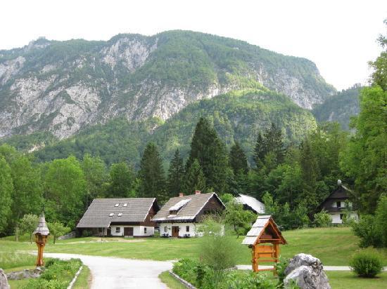 Alpik Apartments at Lake Bohinj: Area