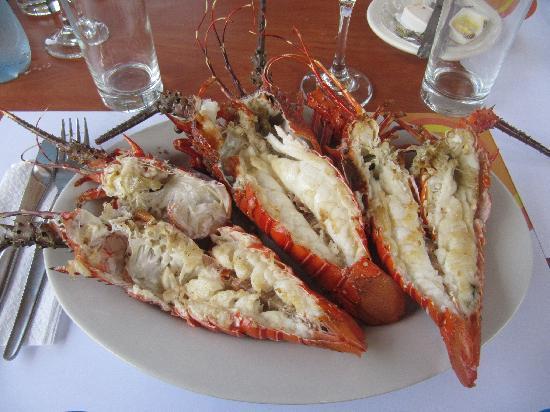 Punta Sal Suites & Bungalows Resort: le aragoste del pescatore
