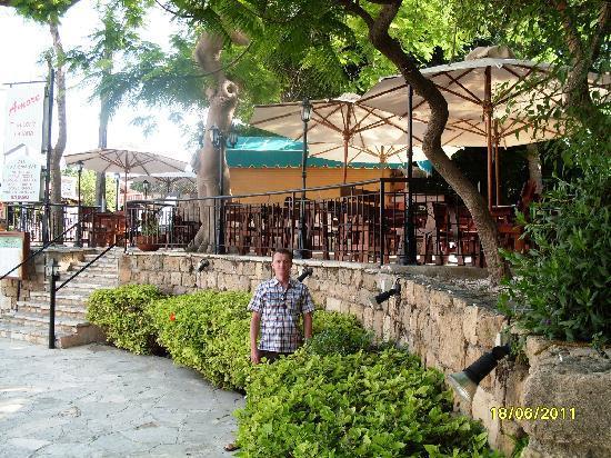 Dionysos Central Hotel : Hotel restaurant