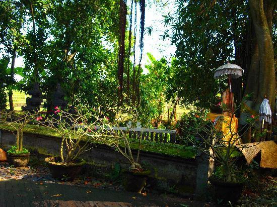 Oazia Spa Villas: Where the Goddess of Fortune lives...Right next to Orchid Villa