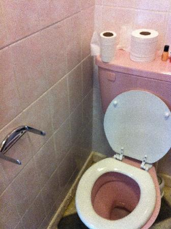 Maple Hotel: Toilet