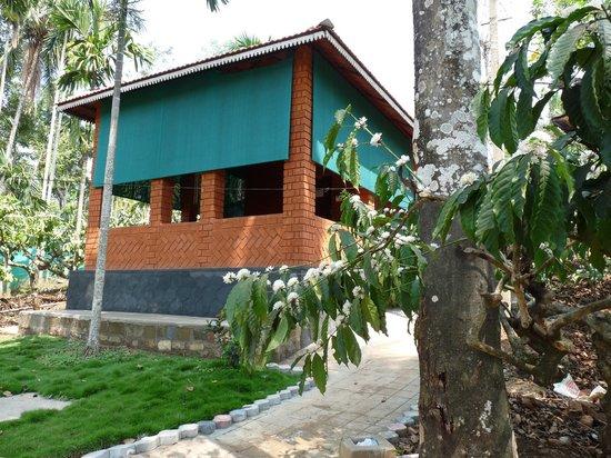 Aashirvad's Pleasant Stays