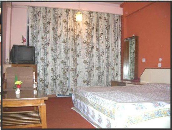 Joshimath, India: Hotel Dronagiri