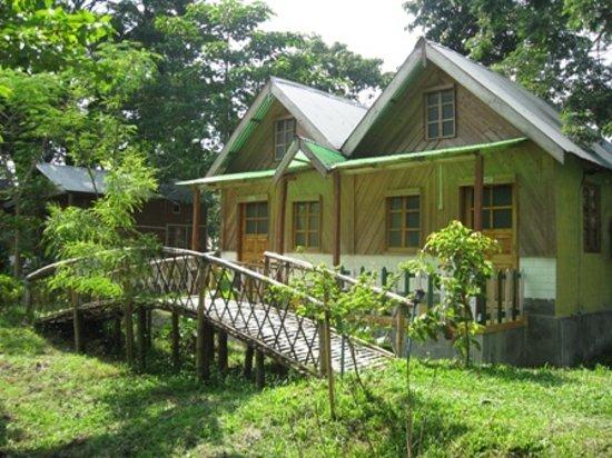 Birpara, India: Jaldapara Jungle Camp