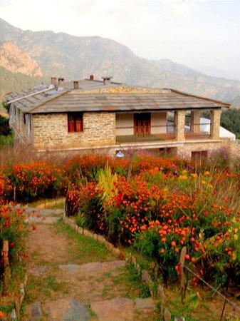 Dunagiri Retreat