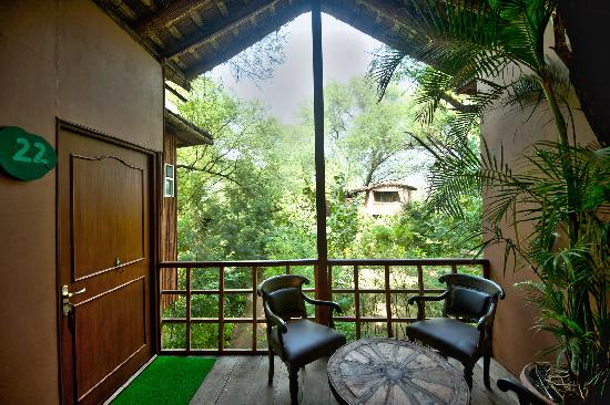 tree house jaipur to the tree house resort picture of resort jaipur
