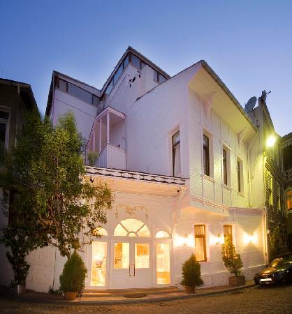 Kupeli Palace Hotel: Entrior
