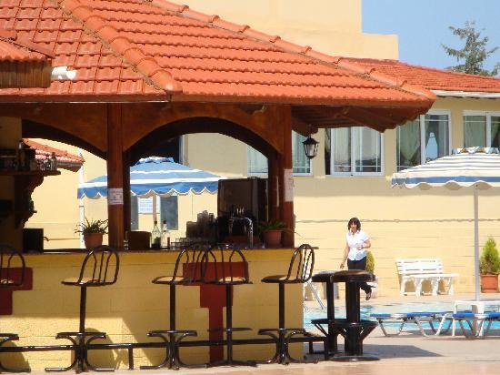 Fantasy Hotel: Lieve bar juffrouw Nicolette