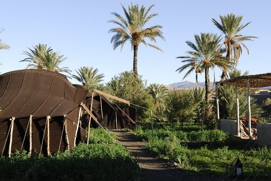 Photo of Camp de l'Oasis Ouarzazate