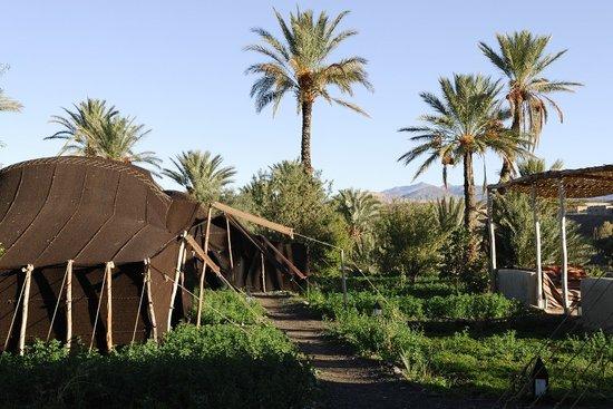Camp de l'Oasis: The camp