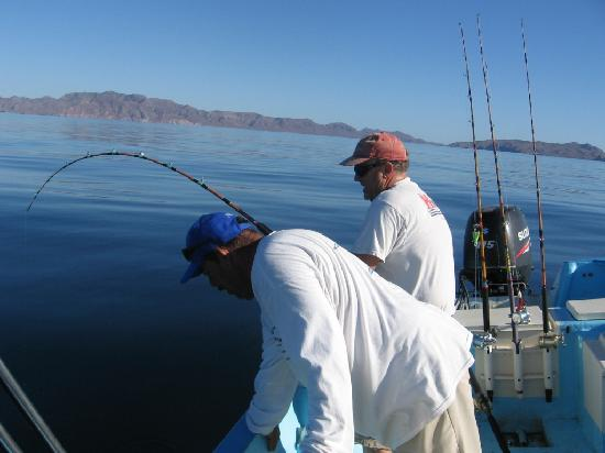 Arturo 39 s sportfishing loreto all you need to know for Do you need a fishing license on a pier