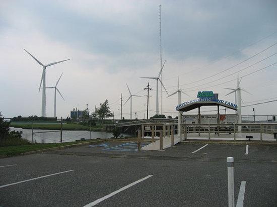 ACUA Wastewater Treatment Facility, Wind Farm, Solar Project