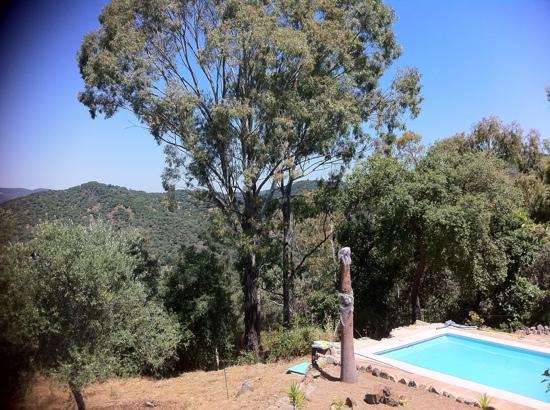 Finca de la Silladilla: vistas piscina