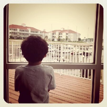 Holiday Inn Express N. Myrtle Beach-Little River: View From Breakfast Room