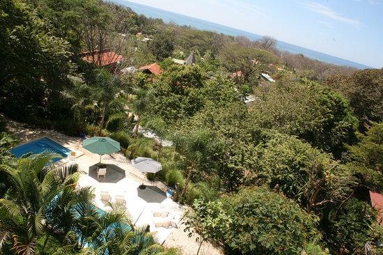 Funky Monkey Lodge: view