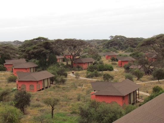 Kilima Safari Camp: Tents