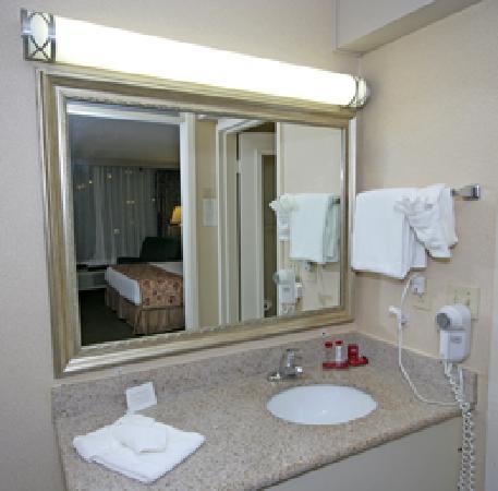 Ramada Asheville / Biltmore West: Vanity