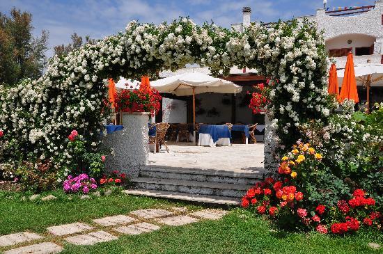 Hotel Portofina: l'arco di rose...