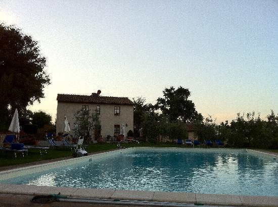Podere Sant'Elena: zona piscina