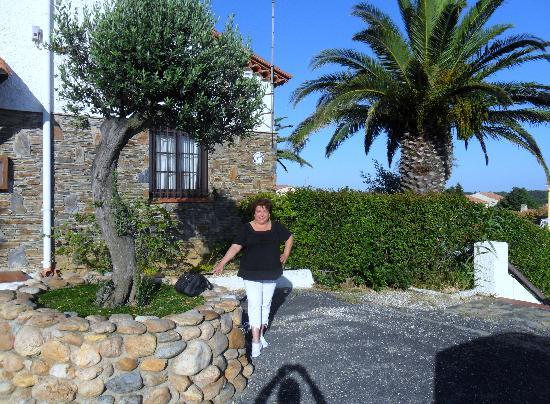 Hotel Le Belvedere: Devant l'hôtel entre palmier et olivier...