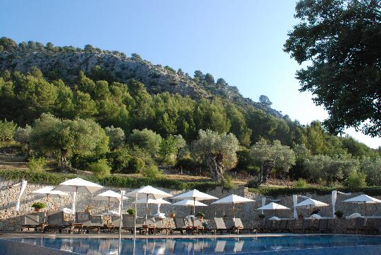 Son Brull Hotel & Spa: pool
