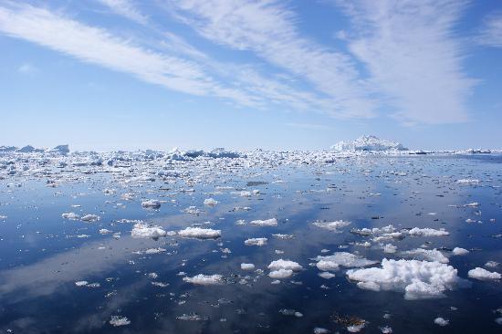 Angmagssalik Hotel: Icebergs