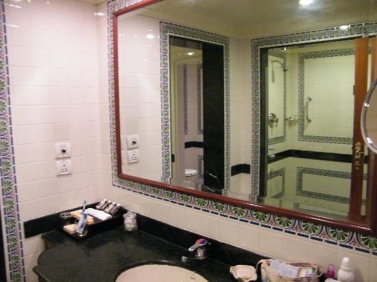 Taj Exotica Goa: Enclosed bathroom - no windows