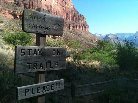 Bright Angel Trail: Towards Indian Gardens