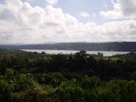 Club Hippique Adventure Park : Views on the rainforest ride