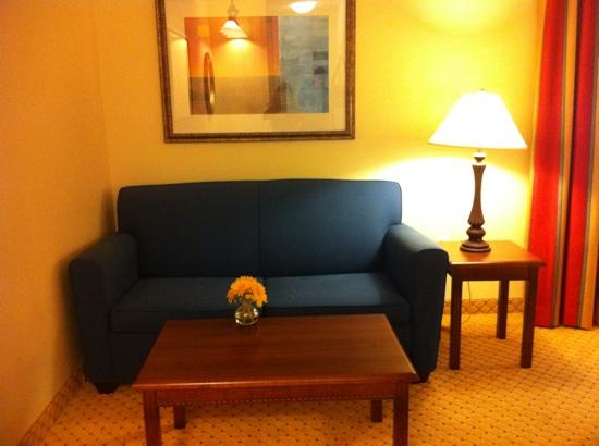 TownePlace Suites San Antonio Northwest: Pull out sofa