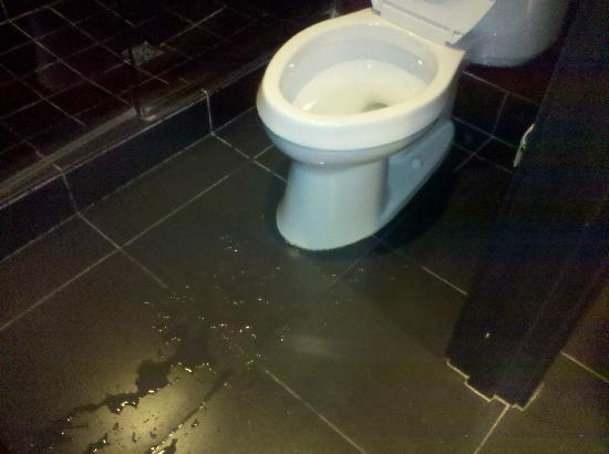 water on floor from leaking toilet - Picture of Hard Rock