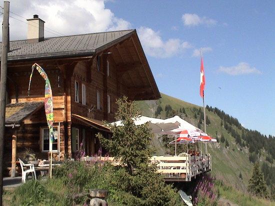 Berggasthaus Waldspitz: Ansicht Berghotel
