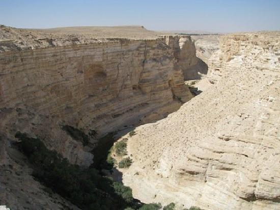 Abboud Tours: Ein Avdat Canyon - after the hike