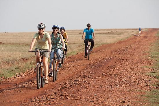 Art of Bicycle Trips : Here we go off-road