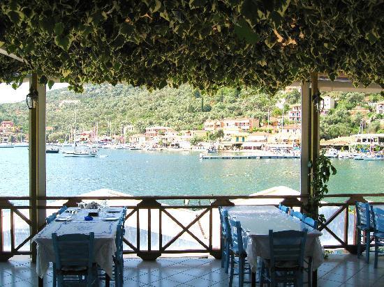 Ionion Taverna: rouf garden