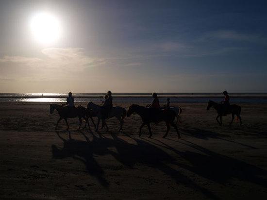 Moonlight riding on the beach, Jericoacoara