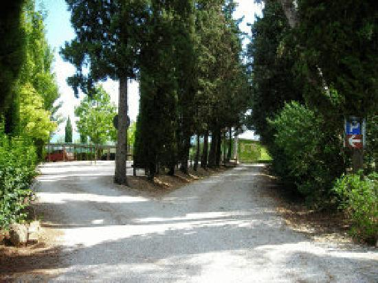 Azienda Agrituristica Villa La Morina : Il parcheggio