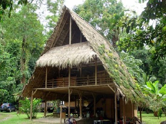 Casitas de Punta Uva: Tiki Hut